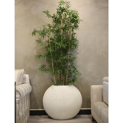 Altıncı Cadde Bambulu Beyaz Saksı 190x60Cm