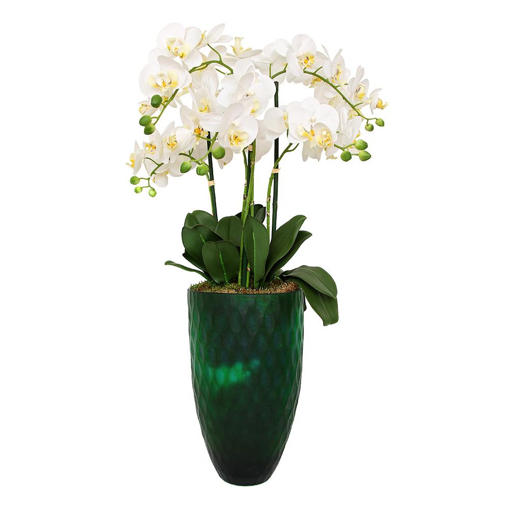 Altıncı Cadde Orkide Aranjmanlı Yeşil Vazo Ürün Resmi
