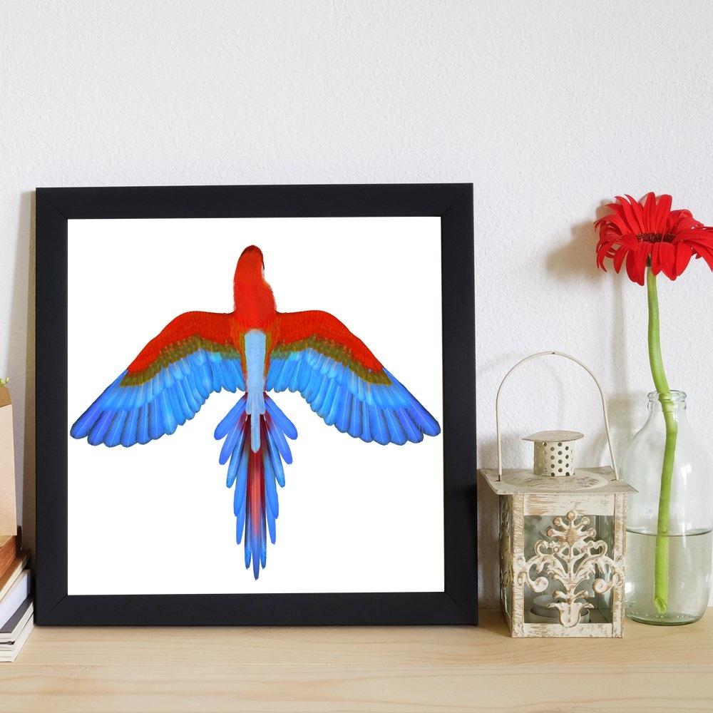 Papagan 40x40 cm Tablo