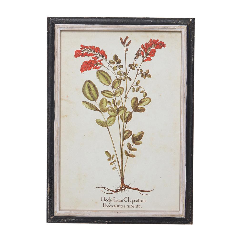Decosuar Bitki Baskılı Dekoratif Çerçeve Ürün Resmi