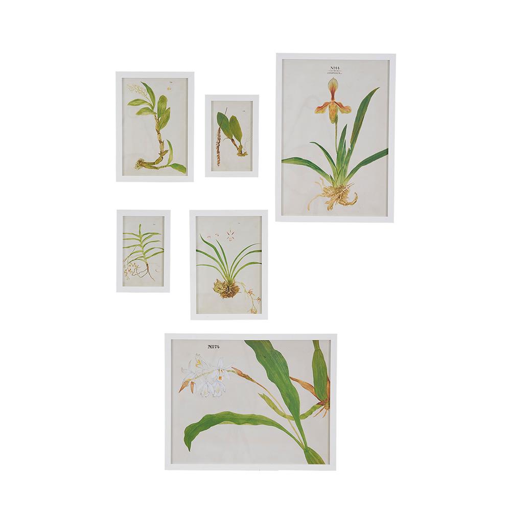 Decosuar Botanik Desenli Köknar Çerçeve Ürün Resmi